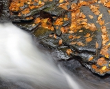 Bushkill Falls - 17