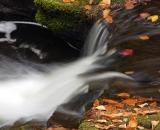 Bushkill Falls - 18