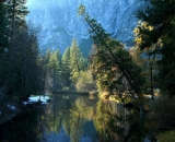 Merced-River-in-Autumn_DSC07719