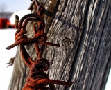 barbed-wire-and-old-wooden-fence-post_RAG 091