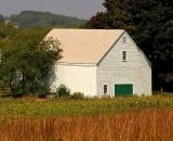 barn-and-field-in-autumn_DSC09478