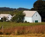 barn-and-field-in-autumn_DSC09479