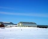 dairy-farm-and-snowy-field_RAG 098