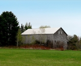 old-barn-with-metal-roof-in-spring-field_P1050519