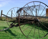 old-hay-rake_RAG 037