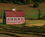 red-barn-and-rows-of-raked-hay_P1080908