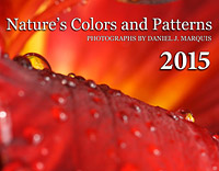 calendar cover for nature's colors and patterns